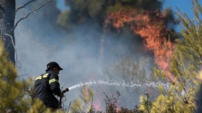 Ανεξέλεγκτη η φωτιά στην Ανάβυσσο - Εκκενώνονται οικισμοί - Καίγονται σπίτια - Ενισχύονται οι δυνάμεις της Πυροσβεστικής - Πυρκαγιά σε Νέα Μάκρη και Κηφισιά
