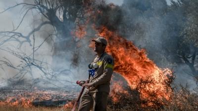 Έως την Κρήτη ο καπνός από τις νέες πυρκαγιές στην Αττική - Εντυπωσιακές εικόνες από δορυφόρο