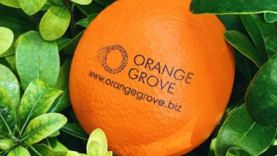 Last Call: Ολοκληρώνονται οι αιτήσεις ενδιαφερομένων από όλη την Ελλάδα για το online Incubation πρόγραμμα του Orange Grove