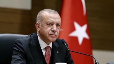 Στο στόχαστρο της Άγκυρας Γερμανός πολιτικός για προσβολή του Erdogan