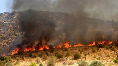Αναζωπύρωση της φωτιάς στη Μεσσηνία - Εκκένωση οικισμού - Αναφορές ότι καίγονται σπίτια