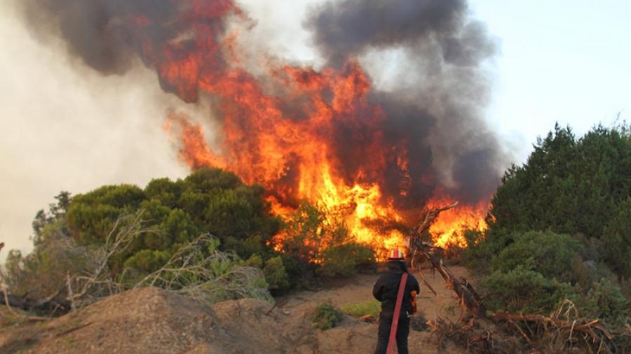 Γενική Γραμματεία Πολιτικής Προστασίας: Πολύ υψηλός κίνδυνος πυρκαγιάς την Κυριακή (1/8)
