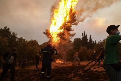 Ποινικές διώξεις για τις πυρκαγιές - Για κακούργημα διώκεται ο 43χρονος στο Κρυονέρι