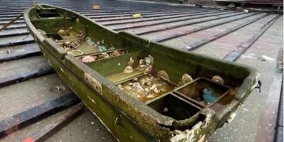 Ιαπωνία: Ψαρόβαρκα ξεβράστηκε στην ακτή 10 χρόνια μετά το φονικό τσουνάμι