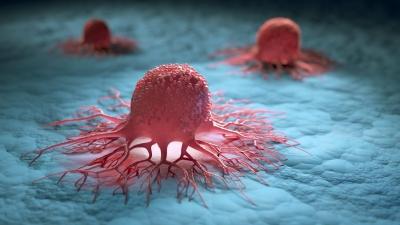 Καρκίνος: Εξατομικευμένη θεραπεία και εξατομικευμένη πρόληψη