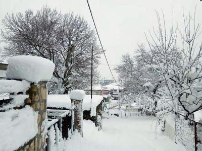 Αποκαταστάθηκε η ηλεκτροδότηση στα χωριά της Β. Εύβοιας - Ανοιχτοί οι δρόμοι