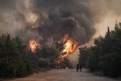 Πυρκαγιές Αττική: Μήνυμα 112 σε Βαρνάβα, Κάλαμο, Ωρωπό, Μίλεσι – Κλείστε παράθυρα, πόρτες, καμινάδες