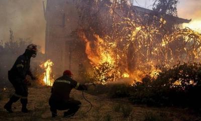 Βιβλική καταστροφή στην Εύβοια - Βίντεο από drone