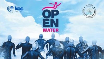 Κολύμβηση: Πυρετώδεις οι προετοιμασίες για το Πανελλήνιο πρωτάθλημα ανοιχτής θάλασσας