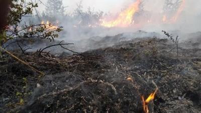Σε ύφεση η φωτιά σε Βίλια και Κάρυστο - Εκκενώσεις οικισμών, κάηκαν σπίτια
