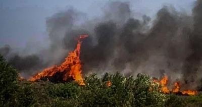 Πυροσβεστική: 58 δασικές πυρκαγιές το τελευταίο 24ωρο σε ολόκληρη την Ελλάδα