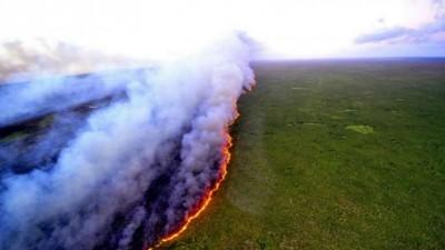 Βραζιλία: Οι πυρκαγιές στην Αμαζονία το 2020, οι χειρότερες των τελευταίων δέκα χρόνων