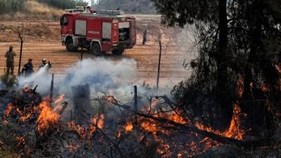 Εισαγγελική παρέμβαση μετά τις αποκαλύψεις για τις φωτιές σε Κύθηρα και Μάνη το 2017