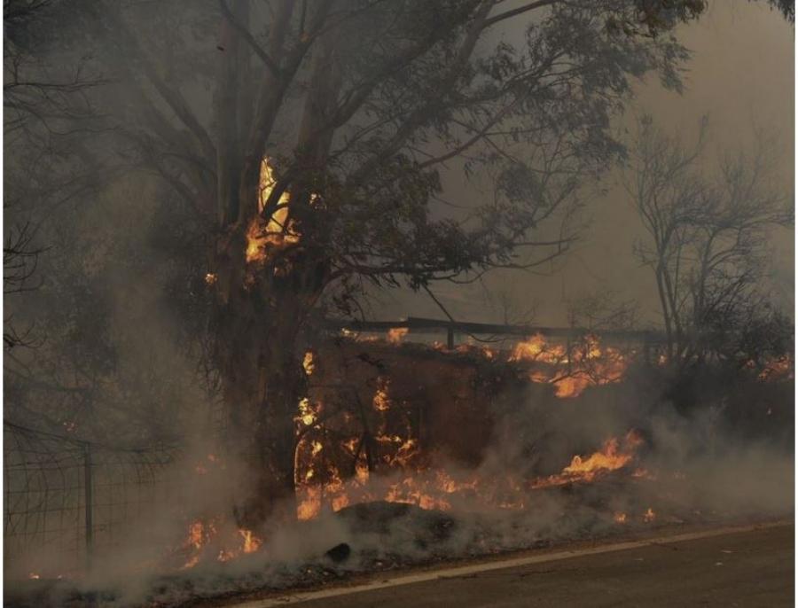 Καλύτερη η εικόνα της πυρκαγιάς στην Αχαΐα - Στους 16 οι τραυματίες στην Αιγιάλεια, κάηκαν σπίτια