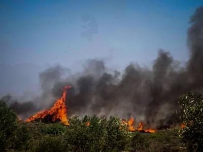 Υπό μερικό έλεγχο πυρκαγιά στη Βάρη – Δεν υπήρξε κίνδυνος για κατοικίες
