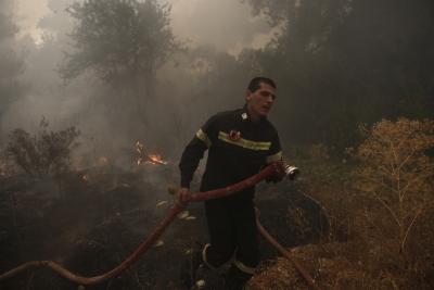 Σε ύφεση η πυρκαγιά στη Σταμάτα, κάηκαν σπίτια - Χαρδαλιάς: Βελτιωμένη η κατάσταση, προσήχθη μελισσοκόμος